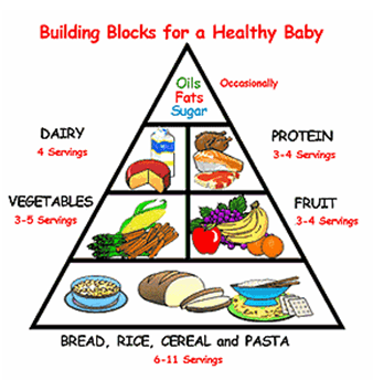 What to eat in the First Trimester of Pregnancy