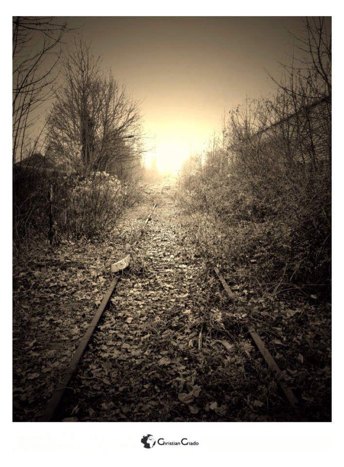 Photographie - Chemin De Fer Abandonné