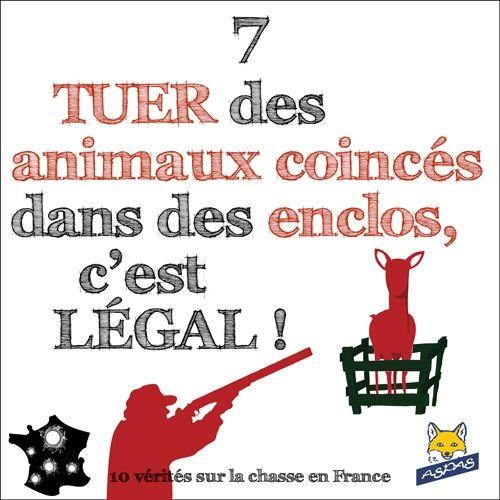 10 Vérités sur la chasse en France