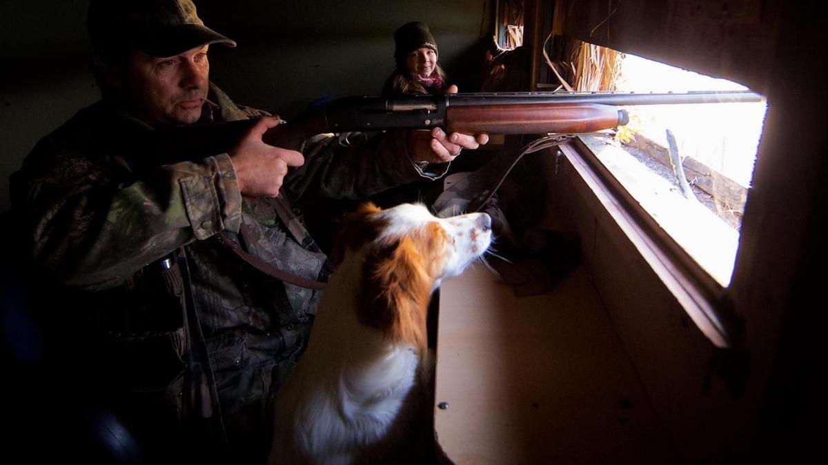 Au final, les chasseurs pourront utiliser des appeaux vivants… sous conditions. Photo :  Johan Ben Azzouz