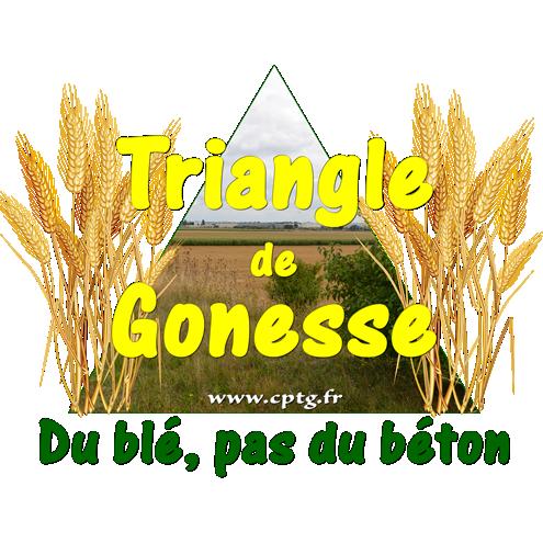 Triangle de Gonesse : les sauveteurs de Terres sèment un champ contre le méga-projet Europacity