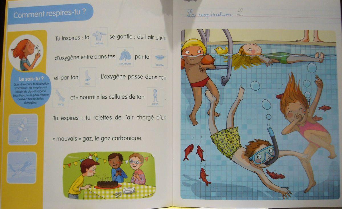 Ma petite encyclopédie en Autocollants - Editions Lito