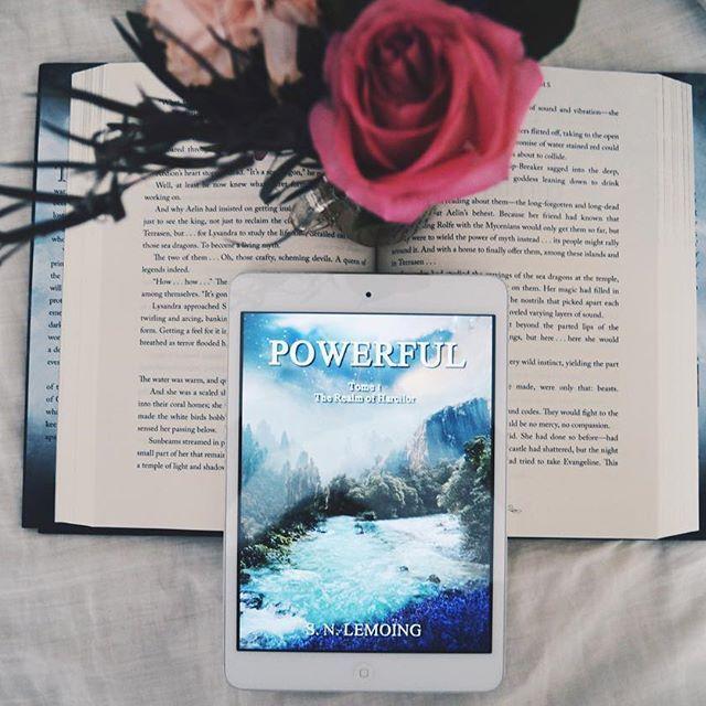 Book blogger - Bibliophilealley