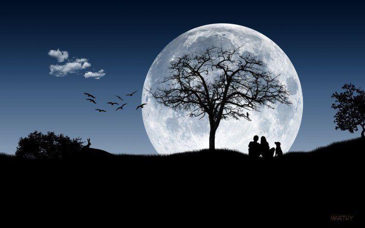 Poèsie &quot&#x3B; Amour de Lune &quot&#x3B; par Rémi dit Pilatom