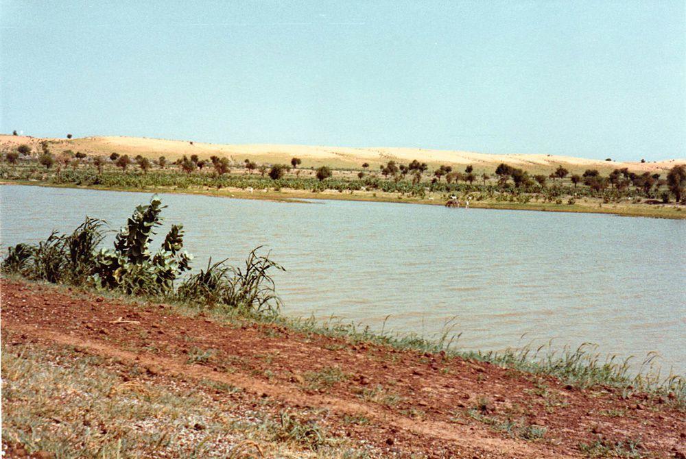 Vue du Niger. (Photos juillet aout 81)