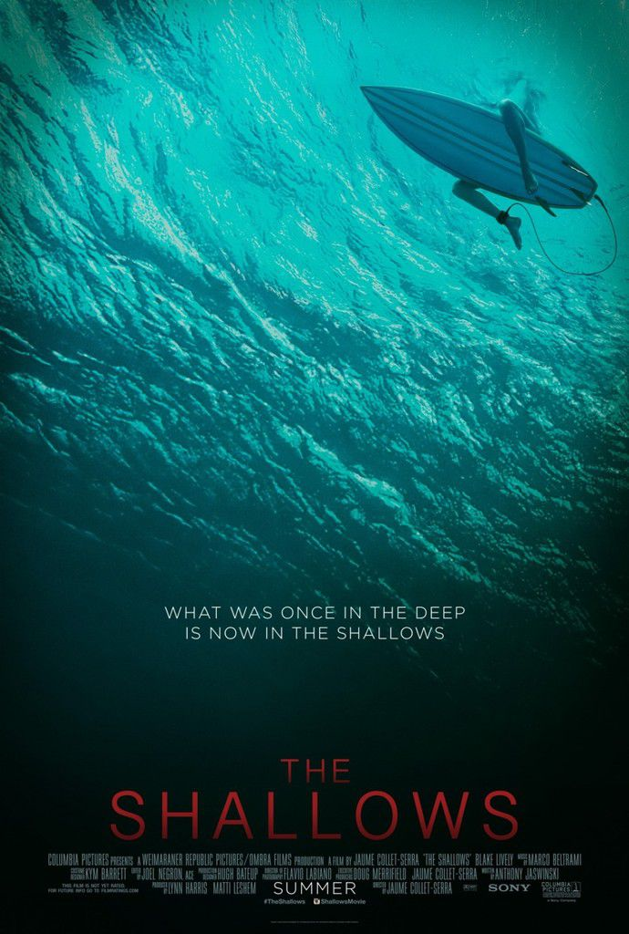 The Shallow (Film Avis)