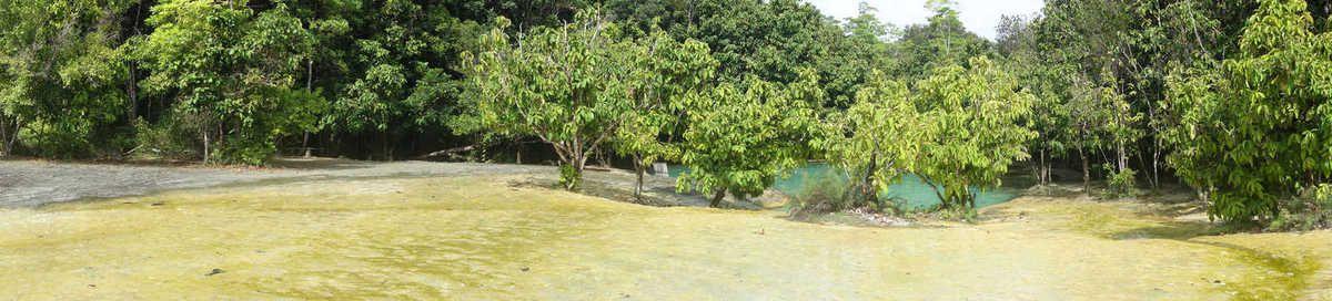 Emerald Pool : une eau cristalline avec un fond vert, c'est magnifique !