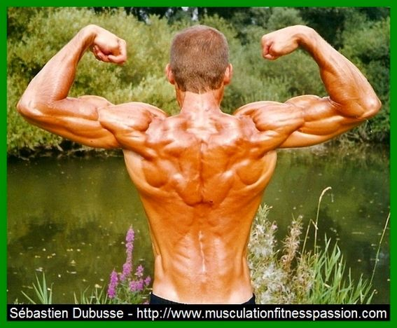 huile olive musculation