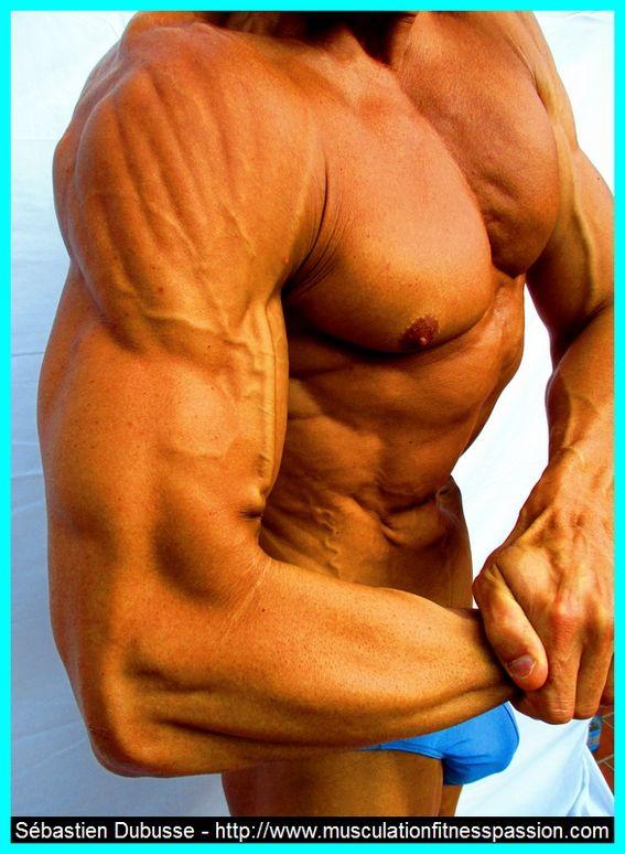 Mon régime alimentaire de sèche en musculation, Sébastien Dubusse, blog musculationfitnesspassion