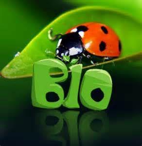 5 bonnes raisons d'acheter bio