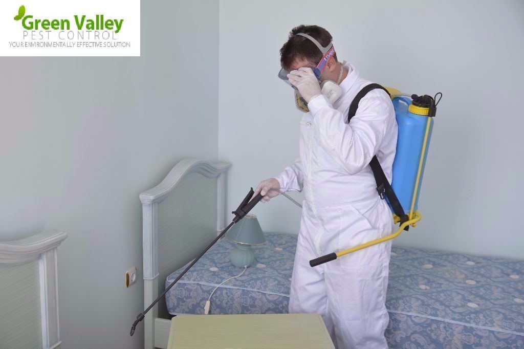 Get Pest Free Ambience with Pest Control Surrey