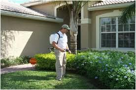 Quick guide to get the best pest control service in surrey