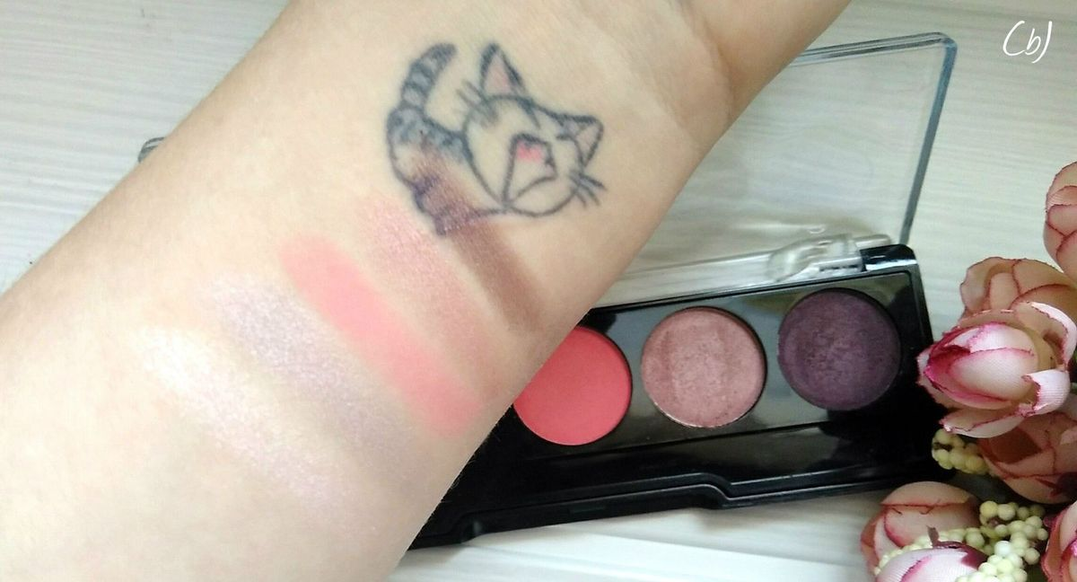 Ma première déception  |  106 Nude Pink Professional palette Eyeshadow de Golden Rose
