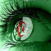 Afin que nul n'oubli l'histoire de l'Algérie