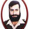 Karnal Sher Khan