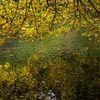L'Ardenne en automne...