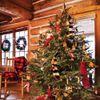 Noël dans Votre Abri de jardin, l'Esprit et la Décoration (2 / 2)