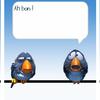Humour - Birds