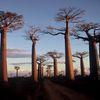 Madagascar : Une nouvelle taxe de 38 euros sur le billet d'avion