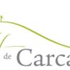 Escapade à Carcassonne : 28/05/2016