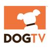 Eloge (très modéré)  de DOG TV