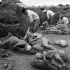 Quelques images des habitants de Pompéi