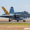 """McDonnell Douglas F/A-18A """"Hornet"""" - 2 Operational Conversion Unit - 75 years"""