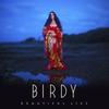 Birdy - Silhouette
