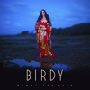 Birdy - Lifted