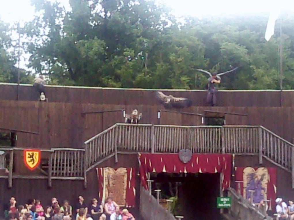A chaque étape, un renforçateur! Manolo applaudit au spectacle des otaries, flappe devant le bouc et rit aux éclats sous les chatouilles de ses babines.