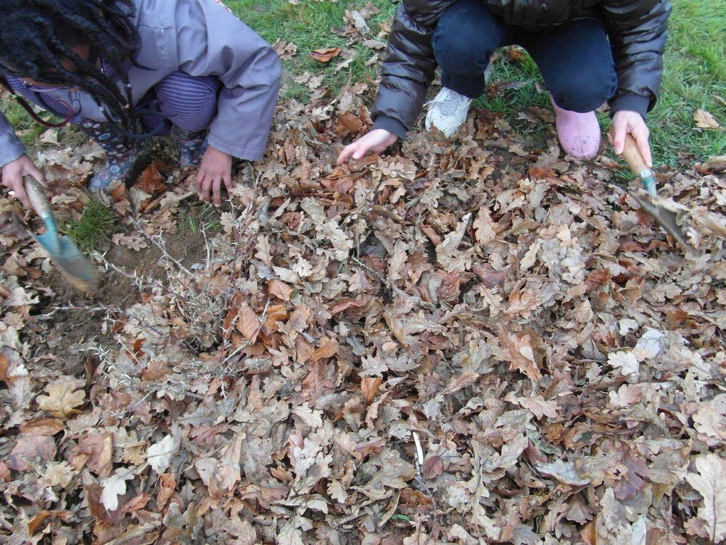 Mois de Décembre: Dans le verger