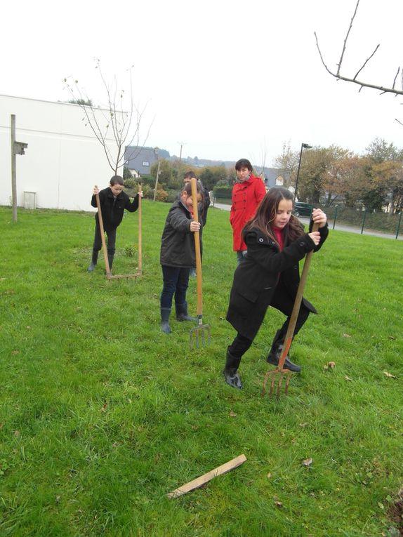 Les élèves de CE2 décompactent la terre à l'aide de la fourche et de la grelinette .Les maternelles transportent les feuilles .