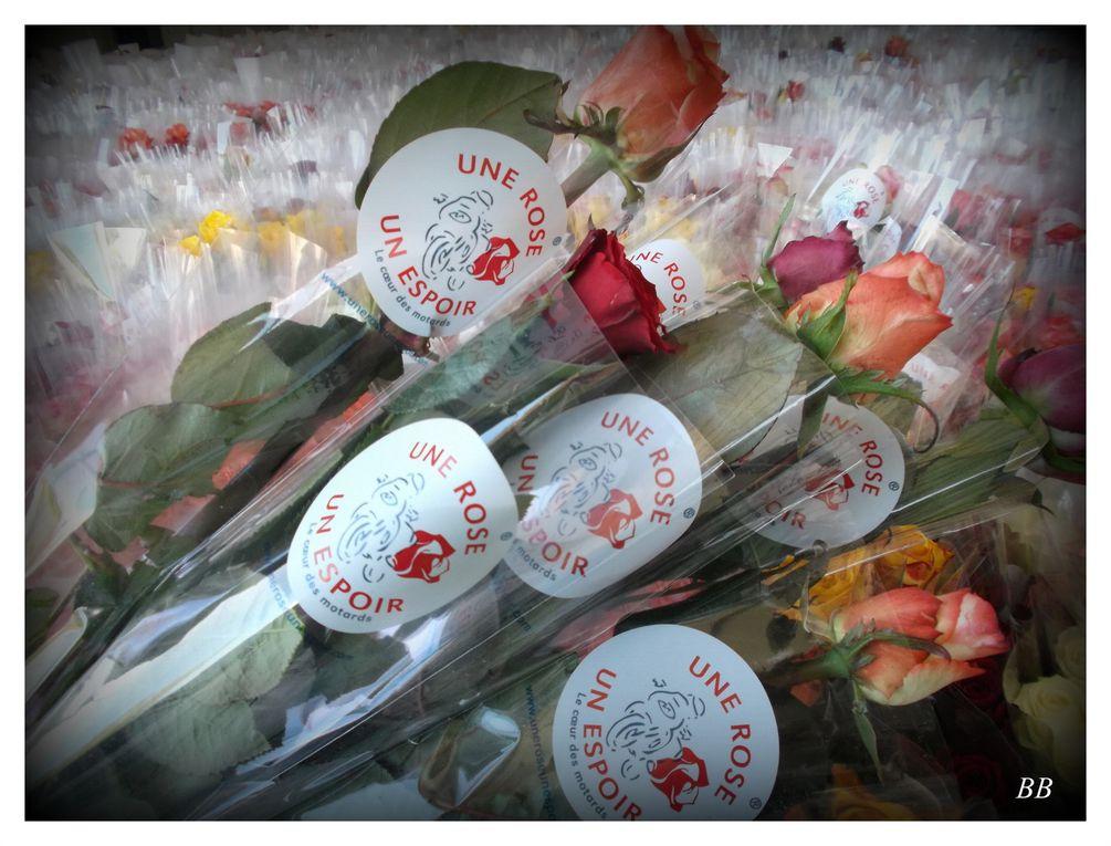 Une Rose Un Espoir week-end du 25 et 26 avril 2015