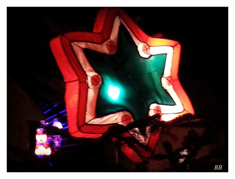 Le Sentier des Lanternes 2015 à Metz