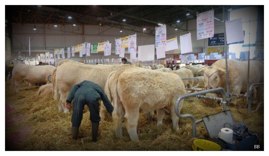 Metz Expo Agrimax Salon Agricole pour les professionnels et l'information du Grand Public les 27,28,29 octobre 2016