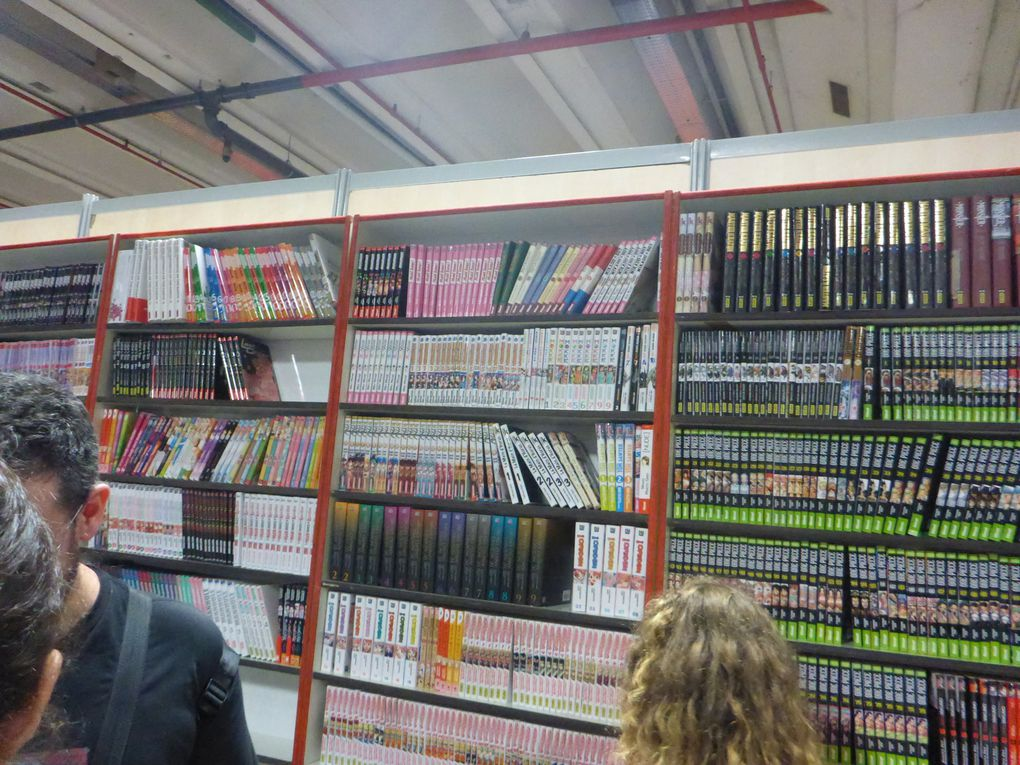 Escale à Paris Manga