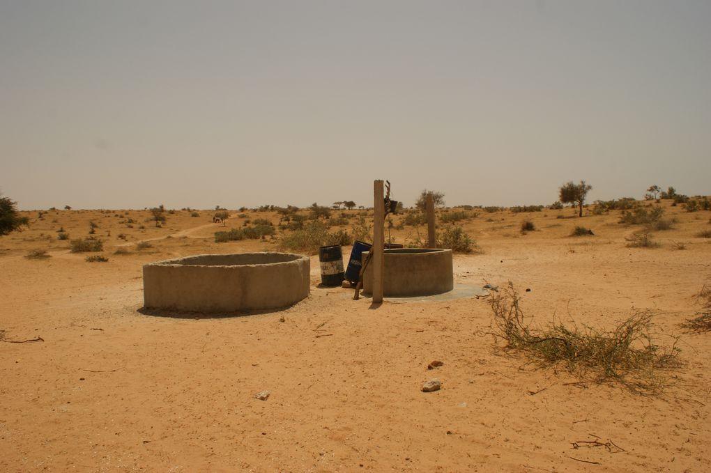 Forage de 9 puits