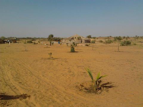 Christiane et El Hadji en visite à AFRIKA RANCH, ont planté chacun un papayer!