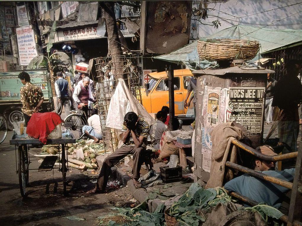 Superbe exposition du photographe Harry Gruyaert