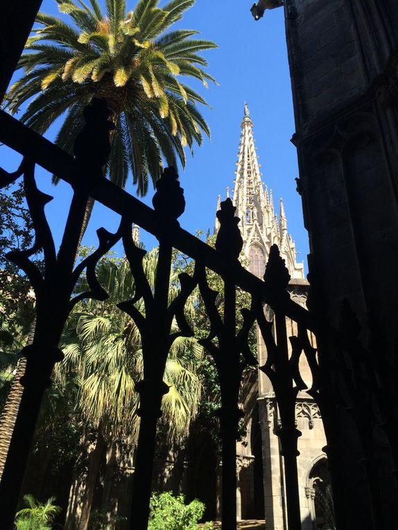 Barri Gotic : Carrer del Bisbe, cathédrale Santa Eulalia, cloître cathédrale, Placa del Rei, Placa Jaume, Le Call