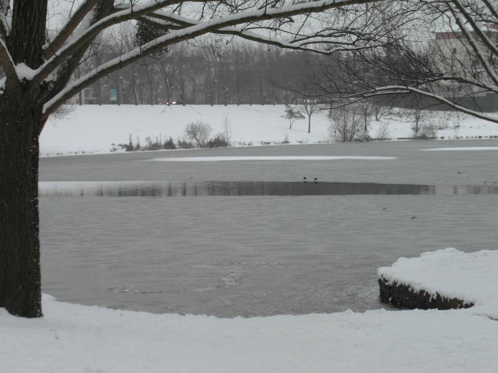 21 janvier : il a encore neigé !