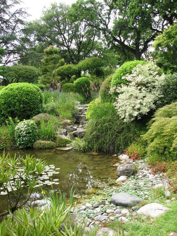 Jardin zen d 39 erik borja talk talk tokyo for Jardin zen drome