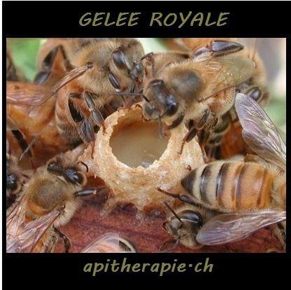 apitherapie.ch