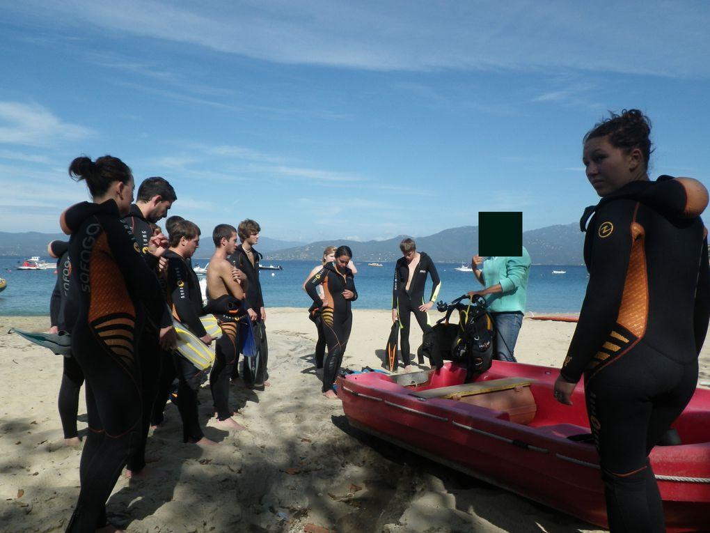 Baptêmes de plongée 2012