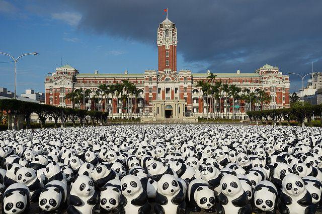 Invasion de pandas