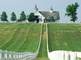 Viticulture au Kentucky