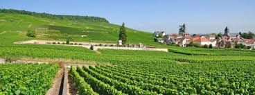 Champagne Producers Epernay France Marne Dept
