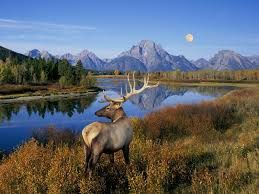 Tourism in Wyoming