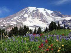 Tourisme dans l'Etat de Washington