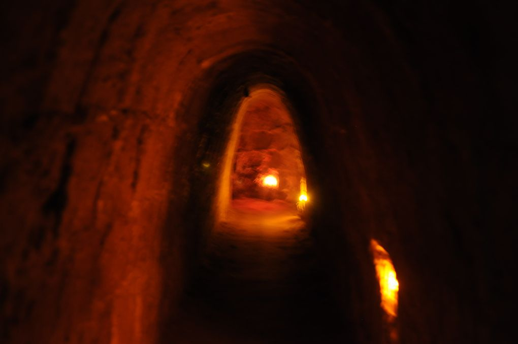Quelques unes des  petites bêtes rencontrées... et les tunnels... et les salles...